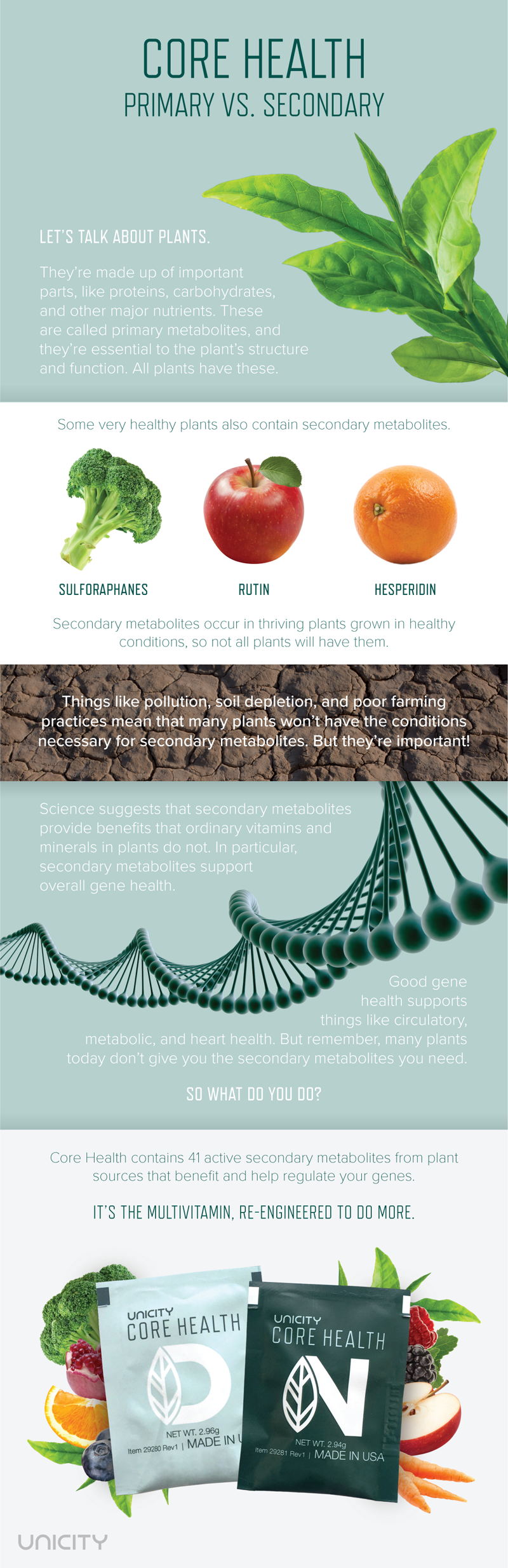 Core Health: Primary Vs. Secondary Metabolites | Unicity Blog